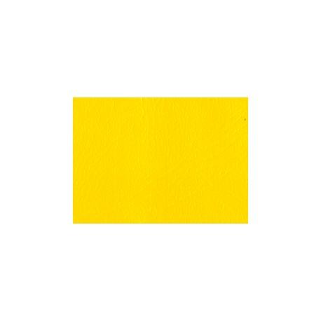 KAP žlutý kůže I.