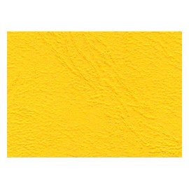 Geltex Color  Struktura 131 yelow