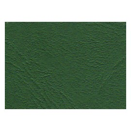 Geltex Color  Struktura 146 pine